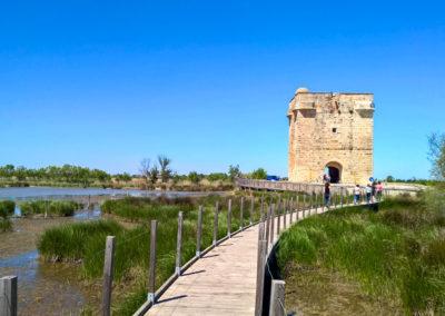 La Tour Carbonière, à Aigues-Mortes